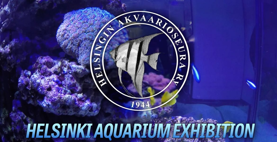 HAS Aquarium exhibition